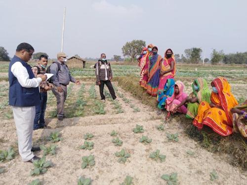 महिलाहरु आयश्रोतको लागि तरकारी खेतीमा रमाउँदै